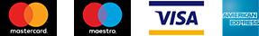 VISA MasterCard Maestro Amex Logo
